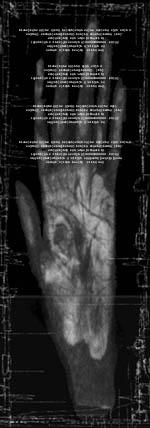 hand2000.jpg (16332 bytes)